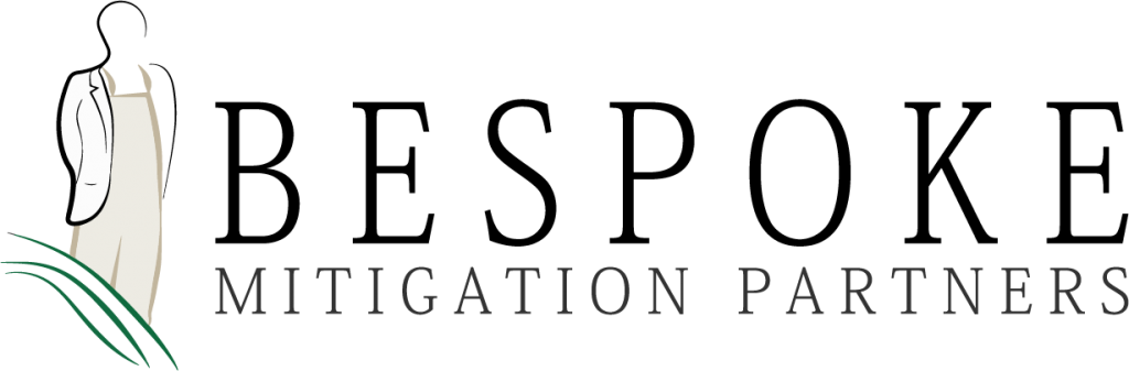 BeSpoke Mitigation Partners e1571786052117
